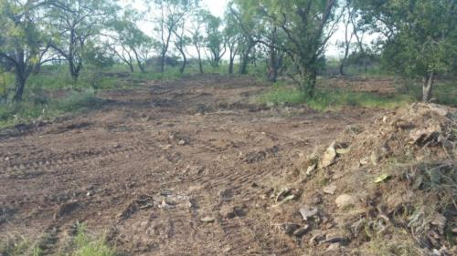 Land Clearing After – Fine Cleaning After Excavator For a Future Yard